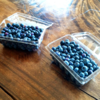 Blueberries Are In