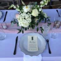 Outdoor Wedding 6.10.22